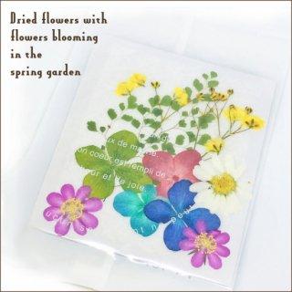 天然花材 春の庭 密封パッケージ 押し花 ドライフラワー レジン封入