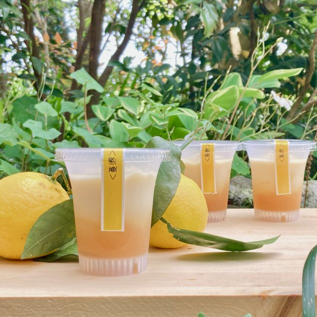 ギフトにも嬉しい自然食品♪乳製品&卵不使用 豆乳プリン<綾日向夏>(3個入り)