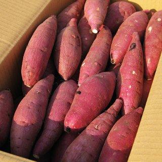 鹿児島の熟成紅はるか10kg サイズが選べるS/M/L/2L 送料無料商品