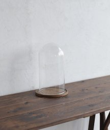 Glass dome[LY]