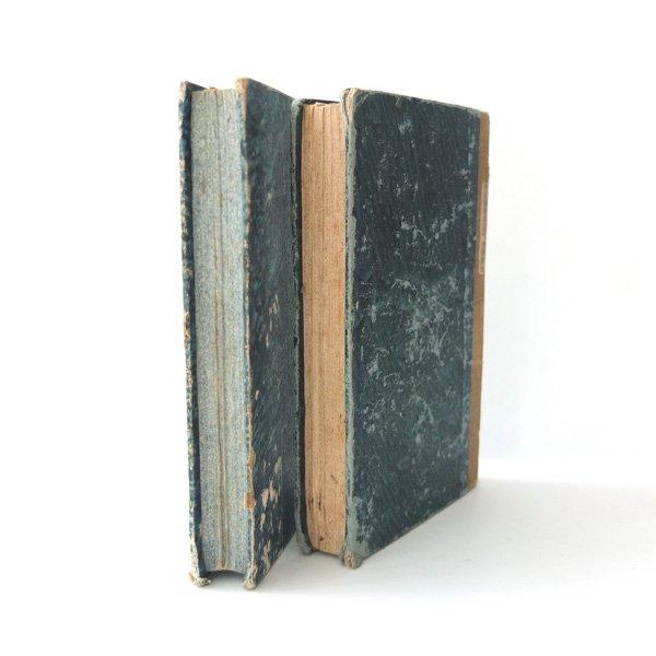 シャビーなアンティークブック ブルー系(2冊)