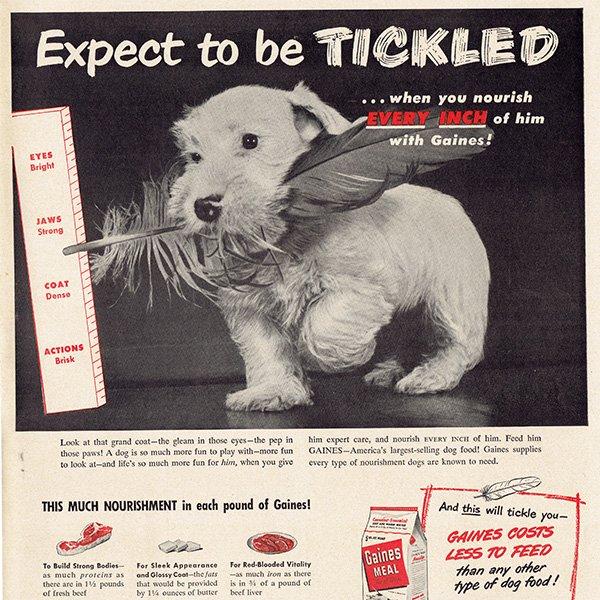 アメリカのヴィンテージ広告〜Gaines DOG FOOD〜 017