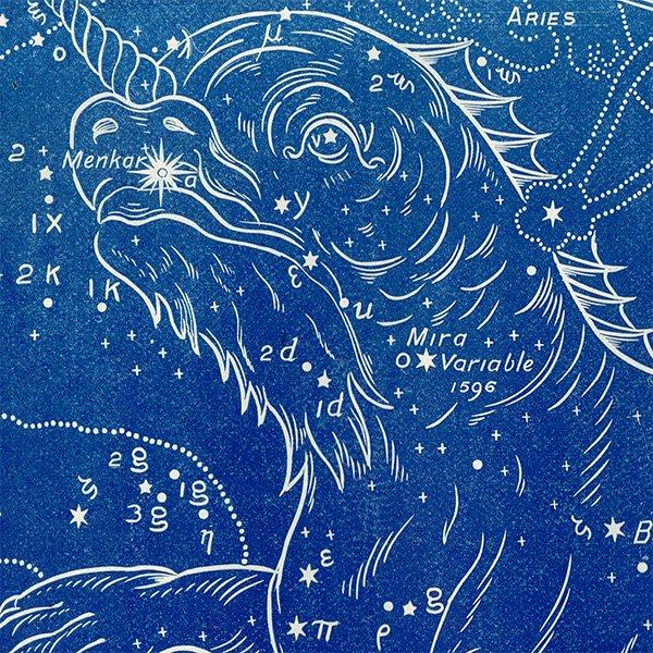 【天文学】くじら座(CETUS/the sea Monster) 星座のアンティークプリント 0045