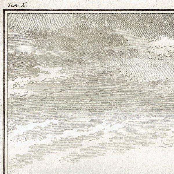 スケルトン 動物の骨格 フランスの博物学者Buffon アンティークプリント  0071