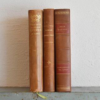 デンマーク 北欧 アンティークブック 古い洋書 3冊セット ディスプレイ052