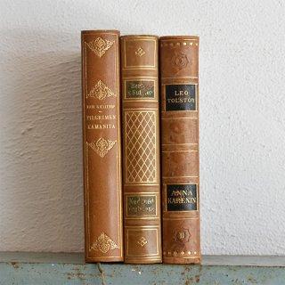 デンマーク 北欧 アンティークブック 古い洋書 3冊セット ディスプレイ053