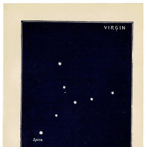 【天文学】星座VIRGIN(乙女座)アンティークプリント 0049