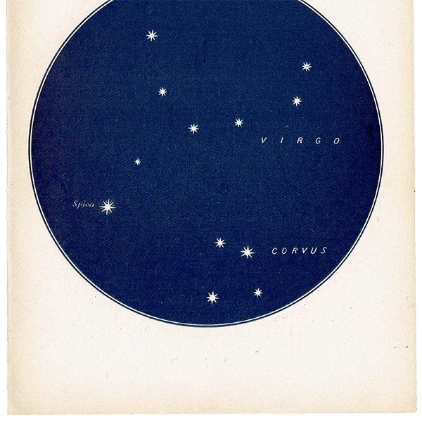 【天文学】星座アンティークプリント(おとめ座・スピカ/からす座MAP18) 0051