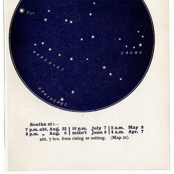 【天文学】星座アンティークプリント(かんむり座/ヘルクレス座/Vega/OPHIUCHUS MAP21) 0053
