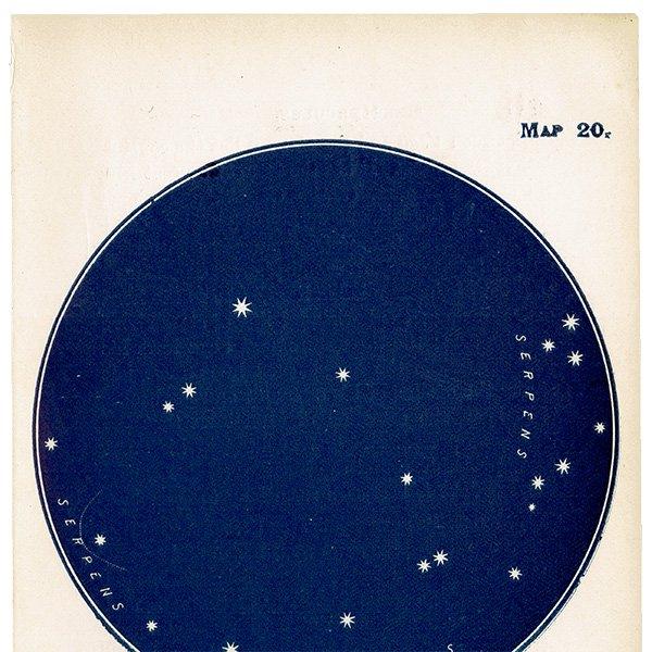 【天文学】星座アンティークプリント(へび座/へびつかい座 MAP20) 0055