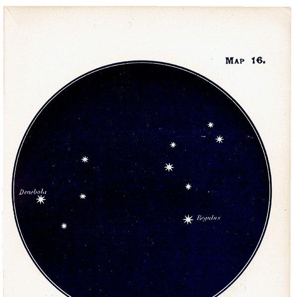 【天文学】星座アンティークプリント(しし座/デネボラ・レグルス MAP16) 0056