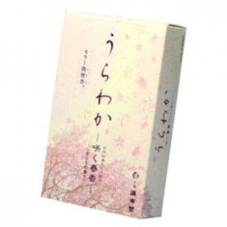 誠寿堂のお線香 うらわか 咲く春香 短寸バラ詰