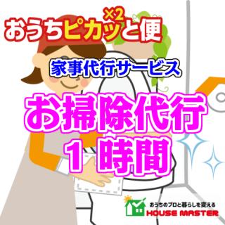 お掃除代行サービス(定期)