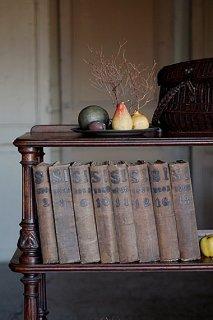 フランス、科学についての古書-science illustrée books