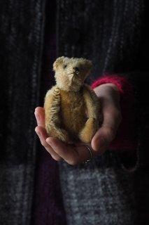 シュタイフ テディベア-vintage Steiff teddy bear