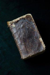 朽ちた革の熟成.国王になれなかった公爵人物伝-antique french book