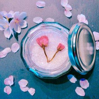 【食品】*10こ限定販売*sakura * salt (104g)