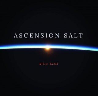【雑貨】ascension salt (100g)