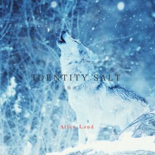 【雑貨】24時間限定販売 * identity salt