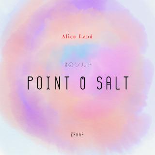 【雑貨】 point 0 salt 〜0のソルト〜  (100g)