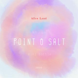 【雑貨】 point 0 salt 〜0のソルト〜  (15g)