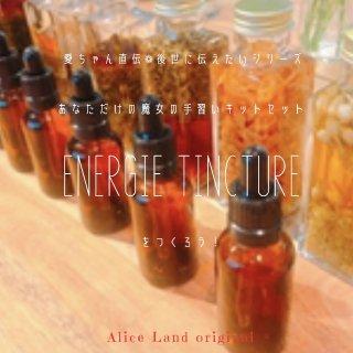 【雑貨】あなただけの魔女の手習い*エネルギーチンキをつくろう!herb & salt set ( herb+salt15g)