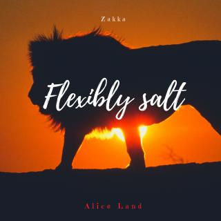 【雑貨】獅子座新月*Flexibly salt(100g)