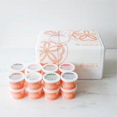 Japanese ice OUCA  選べる十六味ギフト