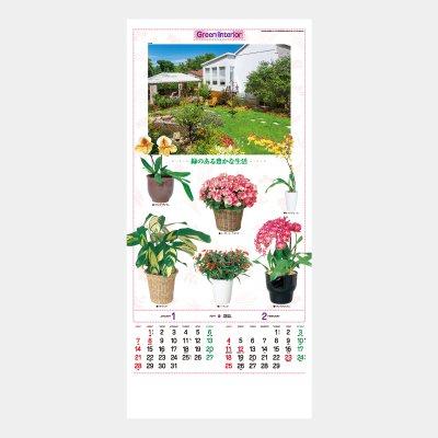 TD-782  観葉植物
