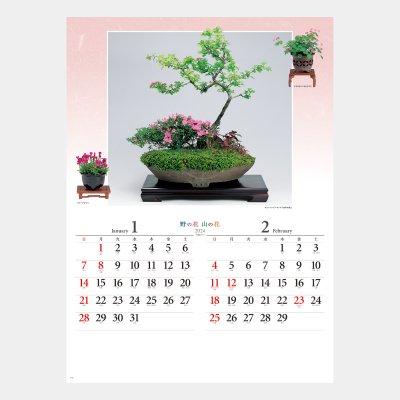 NK-46  野の花・山の花(山野草盆栽集)