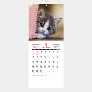 <img class='new_mark_img1' src='https://img.shop-pro.jp/img/new/icons51.gif' style='border:none;display:inline;margin:0px;padding:0px;width:auto;' />SM-105  Sweet Cats