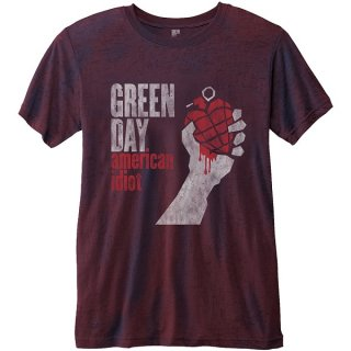 GREEN DAY American Idiot with Burn Out Finishing, Tシャツ