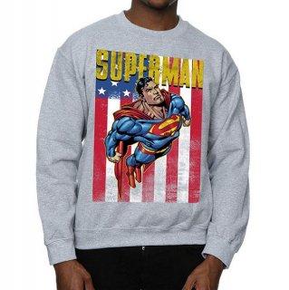 DC COMICS Superman Flight Grey, スウェットシャツ