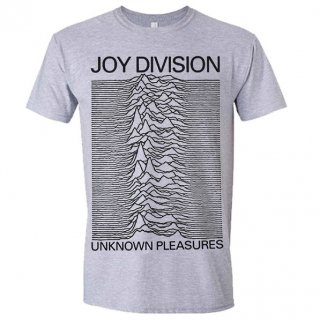 JOY DIVISION Unknown Pleasures Grey, Tシャツ