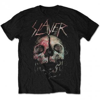 SLAYER Cleaved Skull, Tシャツ<img class='new_mark_img2' src='https://img.shop-pro.jp/img/new/icons5.gif' style='border:none;display:inline;margin:0px;padding:0px;width:auto;' />