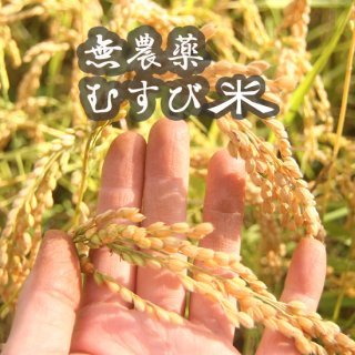 むすび米(無農薬)