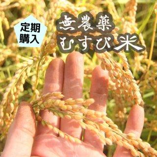 定期購入■無農薬むすび米
