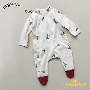 【organic zoo】 オリーブ柄 足付きカバーオール ベビースーツ 新生児/1-3/3-6/6-12か月 Olive Tree Suit オーガニックズー OSLOZ 20AW