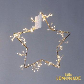 LEDライトハンギングワイヤースター/シルバー インテリア オブジェ ディスプレイ ハンギング クリスマス (107618SL)