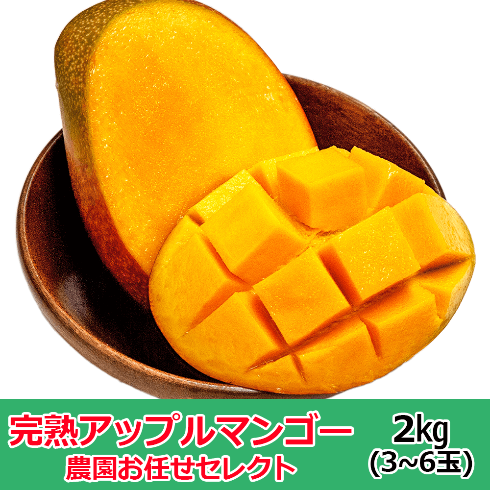 産地直送 沖縄マンゴー 農園おまかせセレクト2�(3~6玉)※サイズにバラつきがあり多少形や色見が良くない物がございますが味は変わりありません。【終了間近】