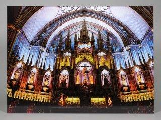 ノートルダム大聖堂(0463)