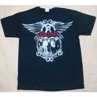 AEROSMITH Big Wings Group 2010, Tシャツ