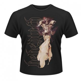 BEHEMOTH Angel, Tシャツ