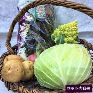 青い森の野菜 ちょっとお試しセット
