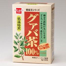 健康フーズ 健康茶シリーズ グァバ茶 箱