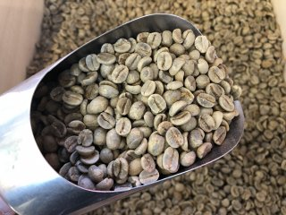 ブラジル・サントス(生豆) 200g