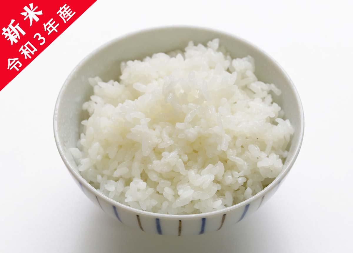 【新米】令和3年産 あわくら源流米 コシヒカリ 白米 10�