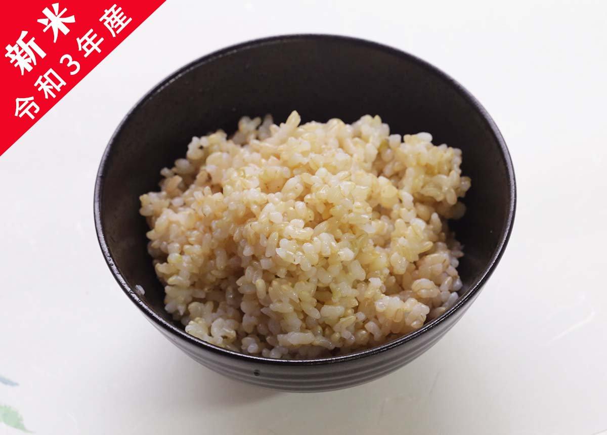 【新米】令和3年産 あわくら源流米 コシヒカリ 玄米 10�