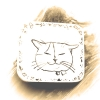 猫ちゃんモデル募集*アクセサリー