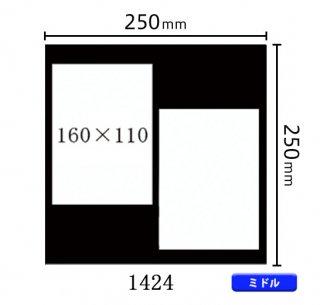 ミドルサイズ中枠 (160×110)×2 (角/左上斜め) 1424